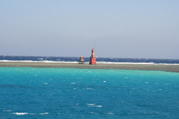 Rafa koralowa koło Hurgady